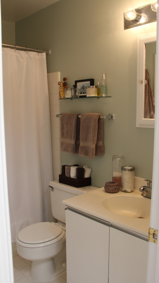 Small Tiny Apartment Bathroom before and after makeover