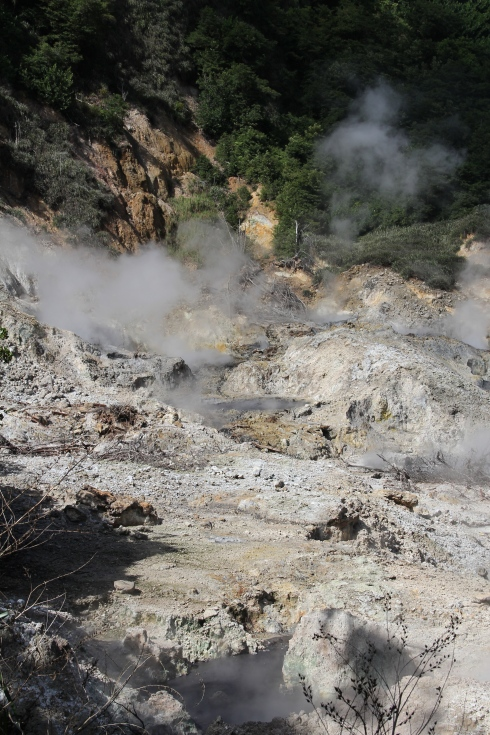 Volcanic Sulphur Springs