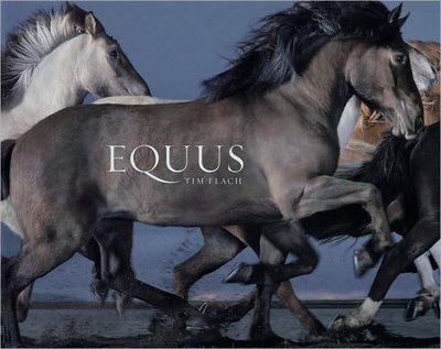 Equus Cover
